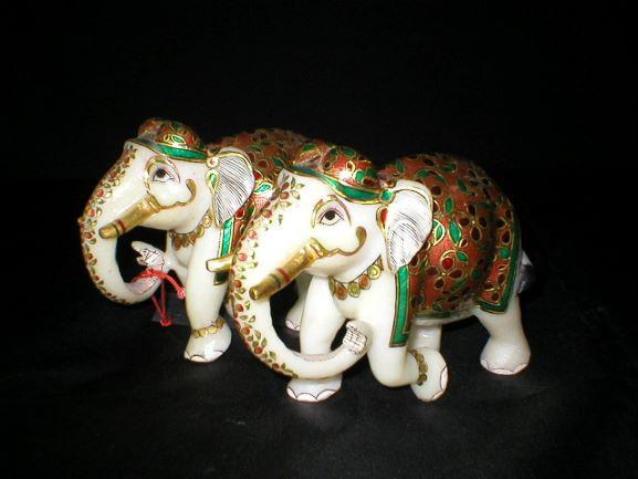 Elephants Special Trunk